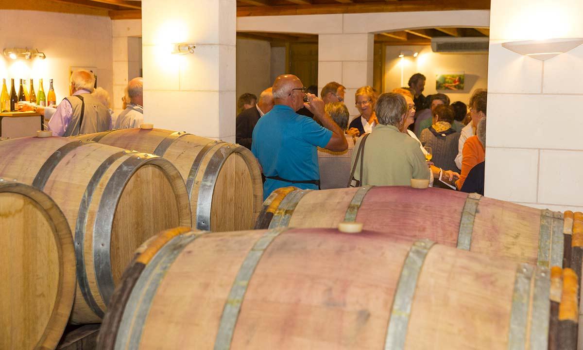 Dégustation de vin au caveau